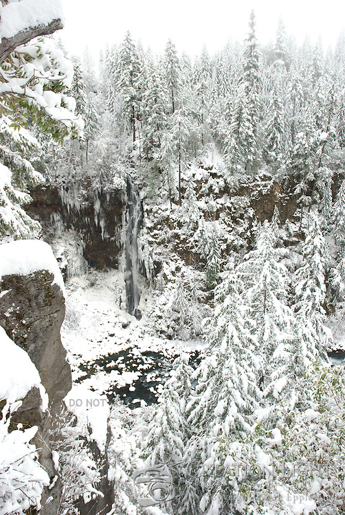 Barr Creek Falls in the Cascade Mountains flows into the Rogue River. Each year the Cascade Mountains receive a lot of snow.  Crater Lake which is not too far away averages 533 inches (44 feet) of snow a year. Fresh snow fills the trees weighing the branches down.