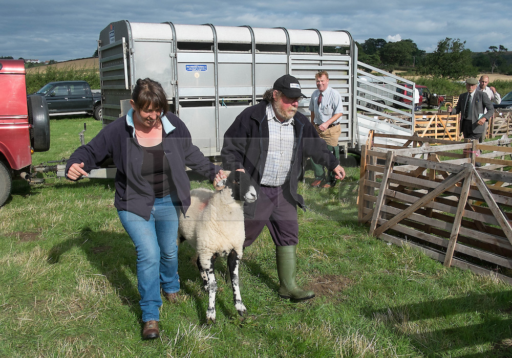© Licensed to London News Pictures. <br /> 13/08/2014. <br /> <br /> Danby, North Yorkshire, United Kingdom<br /> <br /> A couple manhandle one of their sheep into a pen during the Danby Agricultural Show in North Yorkshire. <br /> <br /> This year is the 154th show which was founded in 1848. It is the oldest agricultural show in the area and offers sheep dog trials, judging of a variety of different animals such as cattle, sheep, ferrets, horses and rabbits along with different classes of horticulture and dairy. <br /> <br /> Photo credit : Ian Forsyth/LNP