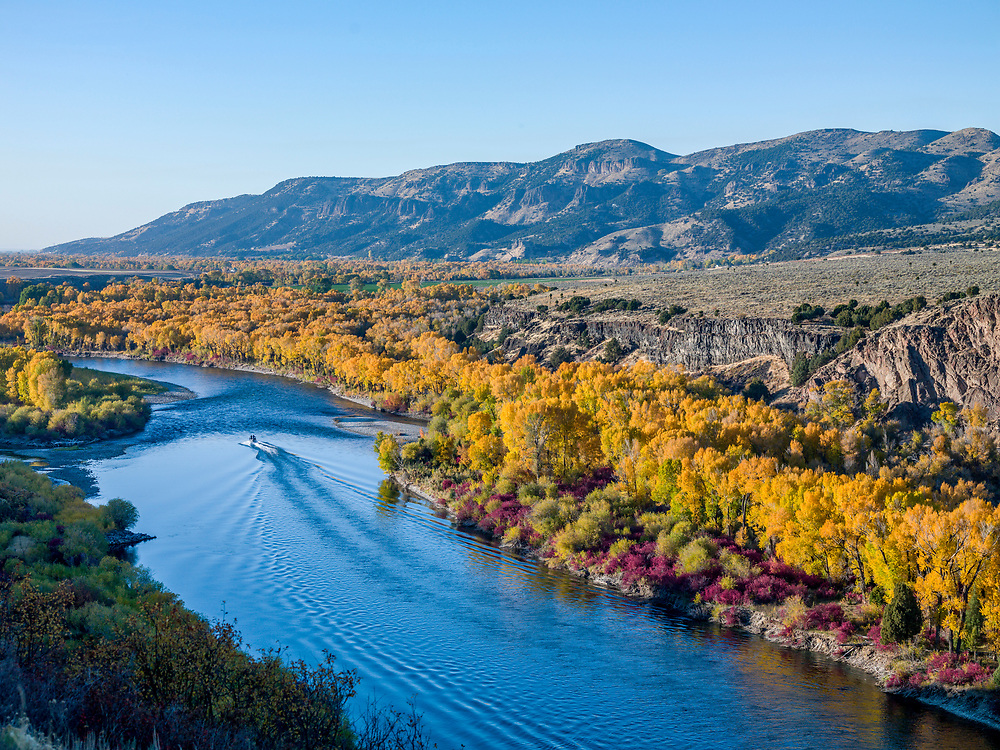 Jet boat motors down the South Fork of the Snake River just above the rural town of Ririe in Eastern Idaho on a gorgeous fall evening. Licensing and Open Edition Prints.