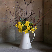A jug of Spring flowers on display at the Bishops Palace, Wells Cathedral in Somerset, United Kingdom on Easter Sunday, 1st April 2018