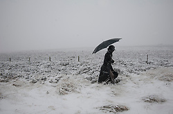 © Licensed to London News Pictures. 14/01/2012. Sheffield, UK. A woman struggles through the snow in The Peak Districts, Sheffield. Photo credit : David Mirzoeff/LNP