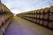 vaulted barrel aging cellar herdade do esporao alentejo portugal