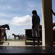 Jockey's prepare to mount their rides in the parade ring during a day at the Races at Ascot Park, Invercargill, Southland, New Zealand. 10th December 2011. Photo Tim Clayton