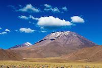 Andean landscape, north Chile
