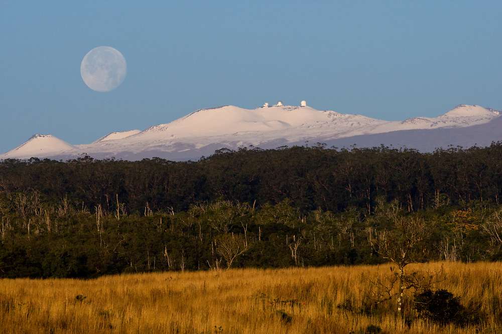 A full moon sets over Mauna Kea as the early morning sunlight warms a forest on its slopes.