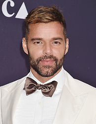 LOS ANGELES, CA - MAY 18: Eric Garcetti, Mayor of Los Angeles attends the MOCA Benefit 2019 at The Geffen Contemporary at MOCA on May 18, 2019 in Los Angeles, California. 18 May 2019 Pictured: Ricky Martin. Photo credit: Jeffrey Mayer/JTMPhotos, Int'l. / MEGA TheMegaAgency.com +1 888 505 6342