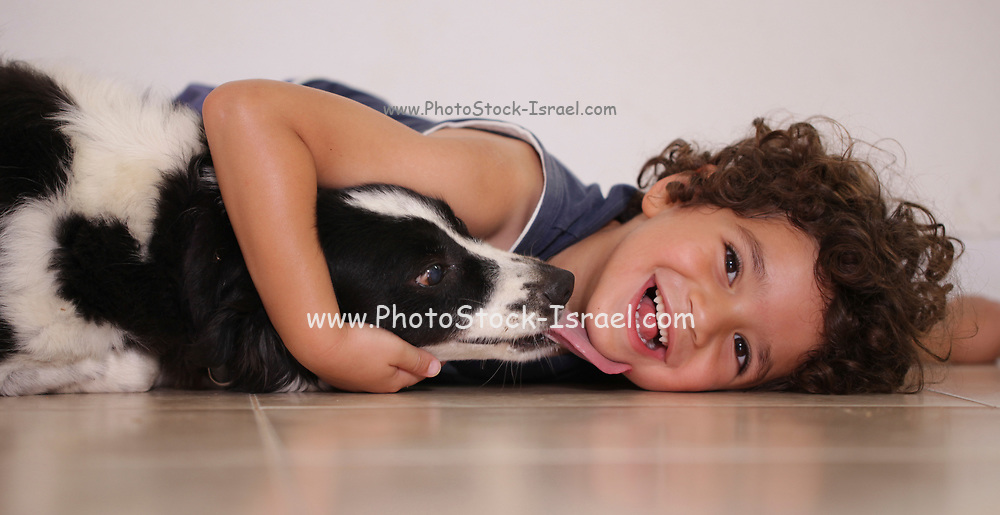 A young boy of 5 plays and hugs his dog while the pet licks the boy. Model release Available