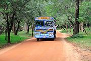 Colourful Lanka Ashok Leyland bus, Polonnaruwa, North Central Province, Sri Lanka, Asia