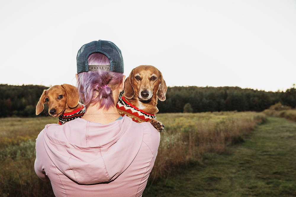 woman holding an adult dachshund and a puppy over her shoulder