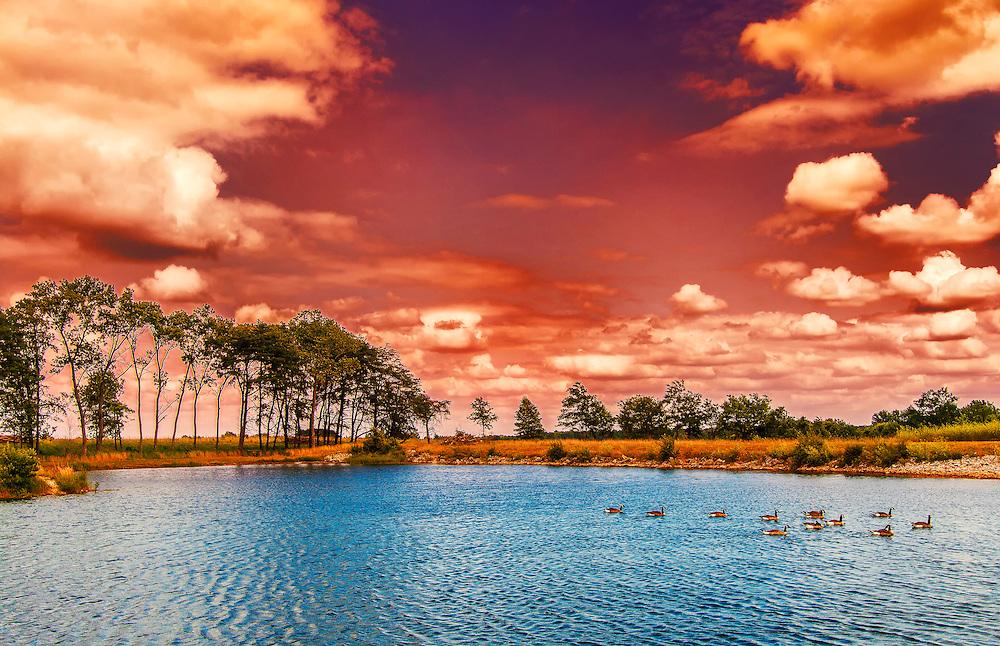A Purple Sunset Over Busch Wildlife
