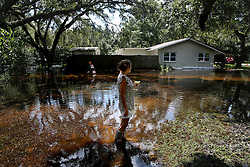 September 7, 2016 - New Port Richey, Florida, U.S. - SUZANNE HAMILTON surveys flooding in the front yard of her home and her street in the Bass Lake Estates on Tuesday. Standing flood water continues to cause problems days after the Anclote River crested near Ridge Road and the surrounding neighborhoods in New Port Richey where storm drains remain clogged and more water settled from other Pasco County neighborhoods in the wake of Hurricane Hermine. Many are blaming Pasco County for not doing enough before the area was inundated with heavy rain. (Credit Image: © Douglas R. Clifford/Tampa Bay Times via ZUMA Wire)
