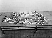 Parts of a sheep cut into joints in butchery school college, Finland 1950s