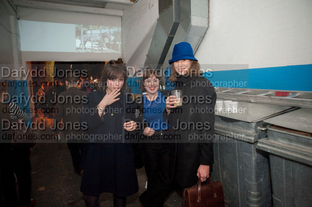 Opening of Statues Die Too.- Group exhibtion of Gabriele Beveridge, Niamh Riordan, Lise Hoveson, Rose O'Gallivan, Poppy Jones. The Garage. North Terrace, South Kensington. London. 16 November 2009.