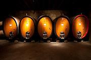 Oak wine casks in wine cellar in a Napa Valley winery, California