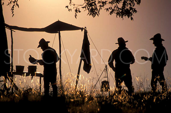 Cowboys preparing dinner on the trail