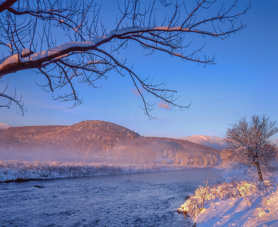 Deerfield River, first light, mist rising, snow covered ash tree branch frames view, snow covered hills, winter, Charlemont, MA