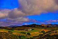 Vineyards near the Pinnacles National Monument, Monterey County, California USA