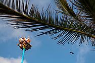 Playa del Carmen, Mexico - May 25, 2021: Five men sit atop a tall pole, performing the Papantla Flyer ritual at Parque Fundadores in Playa del Carmen. The ritual consists of dance and the climbing of a 30-meter (98 ft 5 in) pole from which four of the five participants then launch themselves tied with ropes to descend to the ground. The fifth remains on top of the pole, dancing and playing a flute and drum.