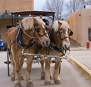 Horse-drawn carriage ready for business
