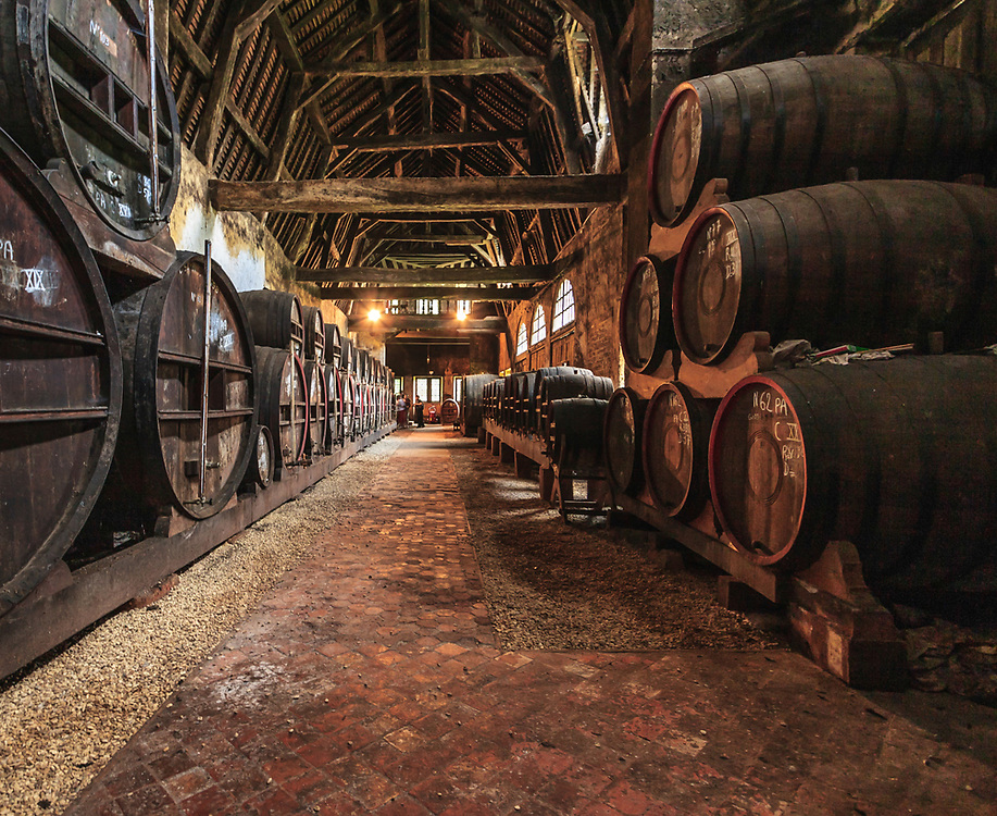 """Oak casks in the cellars of Château du Breuil in Normandy, France. Calvados ages in oak barrels which are chosen carefully, because the ongoing exchanges between the calvados, air and the tannic material in the wood affect the evolution of the """"eau-de-vie"""". The aging can vary from two to tens of years during which the roundness, hint of wood and subtlety will slowly take place."""