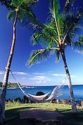 Hammock, Waikoloa Resort, Island of Hawaii<br />