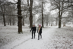 © Licensed to London News Pictures. 24/01/2021. London, UK. People take a Sunday walk as snow falls in Bushy Park, south west London. A band of snow is crossing the south east this morning as temperature remain just above freezing. Photo credit: Peter Macdiarmid/LNP