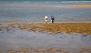 Two children playing with buckets in the sea at Hunstanton, north Norfolk coast, England
