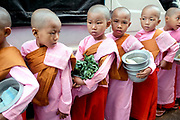 Young nuns collecting alms at an early morning market on 16 January 2016 in Yangon, Myanmar.