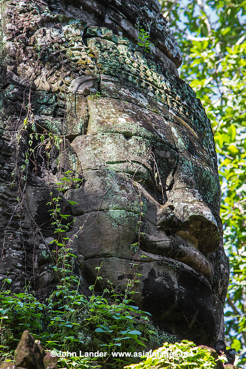Tree Growth Head at Ta Som - built at the end of the 12th century for King Jayavarman VII. It is just east of Neak Pean. The King dedicated the temple to his father Dharanindravarman II who was King from 1150 to 1160. The temple consists of a single shrine located on one level and surrounded by walls. Like the nearby Preah Khan and Ta Prohm the temple was left largely unrestored, with numerous trees and other vegetation growing among the ruins. In 1998, the World Monuments Fund added the temple to their restoration program and began work to stabilise the structure to make it safer for visitors. Ta Som is surrounded by a moat.