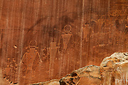 Petroglyphs carved by members of the Fremont Culture are visible in a sheer sandstone face in the Fremont River canyon in Capitol Reef National Park, Utah. The rock face includes symbols of bighorn sheep and other animals as well as people. The Fremont Culture lived in the area from 300-1300 Common Era (CE).