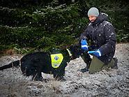 Vsit Norwegian Rescue Dogs, Ski 11-01-2017