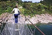 New Zealand, South Island, Nelson Lakes National Park. suspension bridge over Travers River