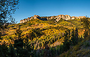 Fall yellow aspen colors on Cimarron Ridge South, San Juan Mountains, near Ridgway, Colorado, USA. Owl Creek-Cimarron Road is an old cattle-drive trail winding up to Owl Creek Pass at 10,114 feet in Uncompahgre National Forest. This image was stitched from multiple overlapping photos.
