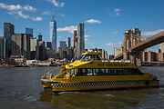 A yellow New York Water Taxi boat sails along the East River, just passing under the Brooklyn Bridge, with Lower Manhattan on the other side of the river.  Photographed across the East River from Brooklyn, New York City, New York, United States of America.