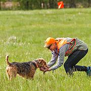2016 Randy Cooley Memorial Hunt Test | Sunday