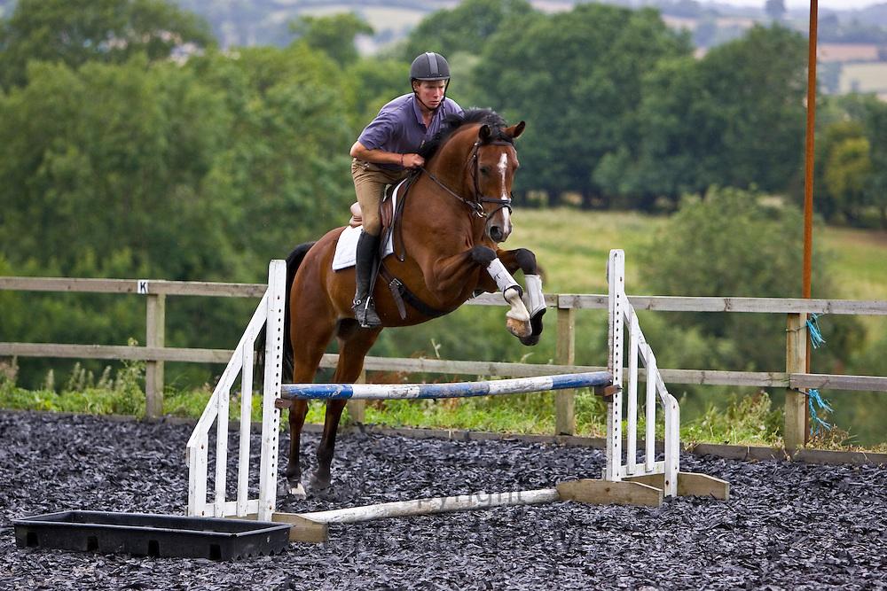 Young man schools a Dutch Warmblood horse, Oxfordshire, England