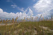 Florida, Fernandina Beach, Street, Fort Clinch State Park