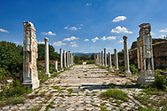 Theatre colonade of Aphrodisias Archaeological Site, Aydin Province, Turkey. .<br /> <br /> If you prefer to buy from our ALAMY PHOTO LIBRARY  Collection visit : https://www.alamy.com/portfolio/paul-williams-funkystock/aphrodisias-site-turkey.html<br /> <br /> Visit our TURKEY PHOTO COLLECTIONS for more photos to download or buy as wall art prints https://funkystock.photoshelter.com/gallery-collection/3f-Pictures-of-Turkey-Turkey-Photos-Images-Fotos/C0000U.hJWkZxAbg