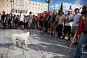 Students demonstrate and a demo dog against austerity measures and planned education reforms in Athens. The demonstration is against an education reform bill which aims to improve the operation of universities. The protesters formed a human chain with arms and red flags linked as they walked through the streets chanting slogans.