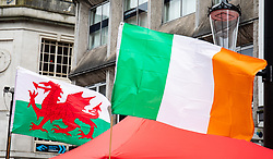 Wales and Ireland banner, flags<br /> <br /> Photographer Simon King/Replay Images<br /> <br /> Six Nations Round 5 - Wales v Ireland - Saturday 16th March 2019 - Principality Stadium - Cardiff<br /> <br /> World Copyright © Replay Images . All rights reserved. info@replayimages.co.uk - http://replayimages.co.uk