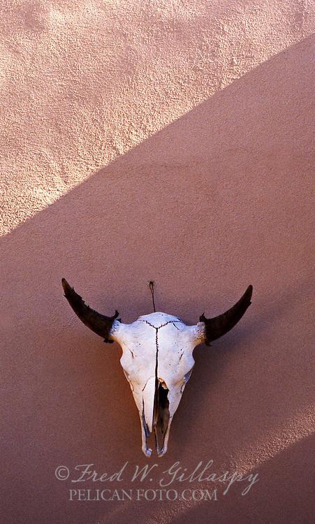 Steer Skull, Santa Fe, New Mexico