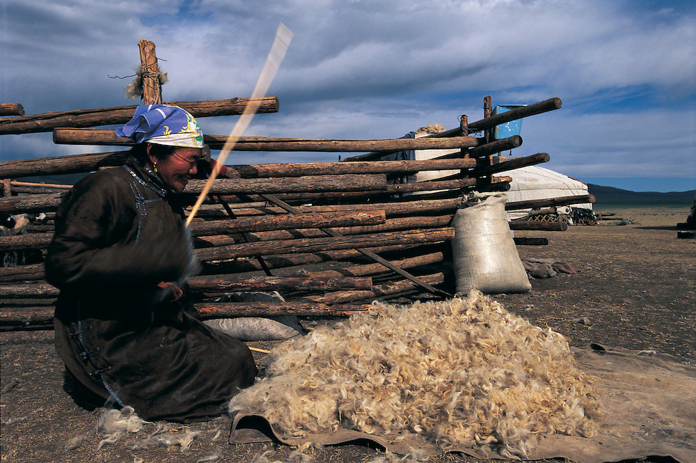 Hitting sheep wool to clean it<br /> for use in felt making<br /> near Erdenet<br /> Mongolia