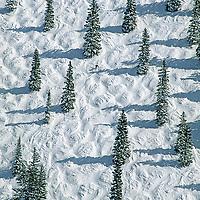 A skier navigates moguls on on the Face of Bell Mountain, Aspen Mountain, Colorado.