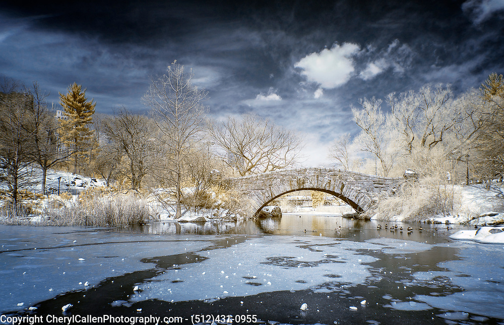 Infrared Central Park in New York