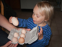 Two-year-old Talus Book (with mother Victoria Fursman Book) marvels at the odd size difference between a double egg (should have been two eggs) and normal sized eggs from his parent's chickens.