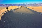 Tourist Walking Through the Eureka Valley Sand Dunes