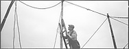 A salmon netter securing poles with ropes on the foreshore at low tide during construction of the fly net on the rocks at Boddin, Angus.<br /> Ref. Catching the Tide 22/00/17 (5th May 2000)<br /> <br /> The once-thriving Scottish salmon netting industry fell into decline in the 1970s and 1980s when the numbers of fish caught reduced due to environmental and economic reasons. In 2016, a three-year ban was imposed by the Scottish Government on the advice of scientists to try to boost dwindling stocks which anglers and conservationists blamed on netsmen.