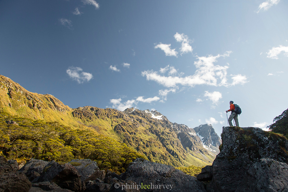 Side view of a male hiker standing on a rock formation near Lake MacKenzie, Routeburn Track, South Island, New Zealand