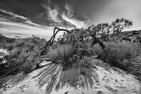 everglades gallery Big Cypress Everglades National Park johnbobcarlos johnbob florida oceans clean water florida