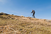 Female hiker in alpine terrain of Cairngorm mountains, Scotland